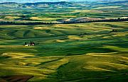 Palouse Prints - Rural Tapestry Print by Mike  Dawson