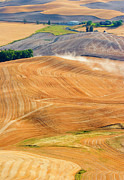 Wheat Prints - Rural Traffic Print by Mike  Dawson