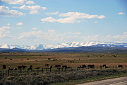Snow Covered Mountains Prints - Rural Wyoming - On the Way to Jackson Hole Print by Susanne Van Hulst