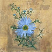 Carrie Jackson Paintings - Russias Chamomile by Carrie Jackson