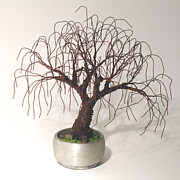 Sal Villano - Rusted Bonsai - Wire Tree
