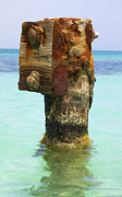 Reddish Flaking Iron Oxide Posters - Rusted Dock Pier of the Caribbean III Poster by David Letts
