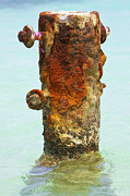 Reddish Flaking Iron Oxide Posters - Rusted Dock Pier of the Caribbean VI Poster by David Letts