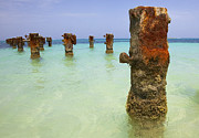 Rogers Beach Prints - Rusted Iron Pier II Print by David Letts
