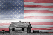 Flag Of Usa Prints - Rustic America Print by James Bo Insogna