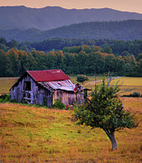 Old Barns Prints - Rustic Barn - Wears Valley Tennessee Print by Thomas Schoeller