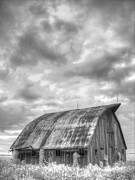 White Barn Framed Prints - Rustic Barn Framed Print by Jane Linders