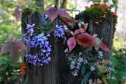 Diane E Berry - Rustic Bouquet