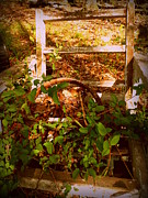 Chippy Photos - Rustic Chair by Cindy Wright