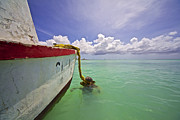 David Letts Framed Prints - Rustic Fishing Boat of Aruba Framed Print by David Letts