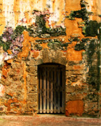 Brick Art Posters - Rustic Fort Door Poster by Perry Webster