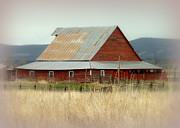 Farming Barns Prints - Rustic Red Barn Print by Cindy Wright