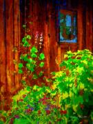 Shed Digital Art Posters - Rustic Summer Shed Poster by Christine S Zipps