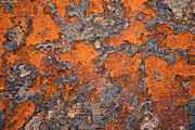 Cafe Wall Illusion Photos - Rusting Away by Ric Bascobert