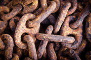 Pirate Ship Photo Prints - Rusty Anchor Chains in Key West Print by Adam Pender