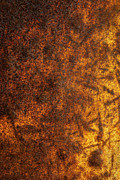 Metal Sheet Photo Prints - Rusty Background Print by Carlos Caetano