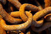 Anchor Photos - Rusty Chain by Carlos Caetano