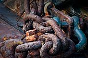 R J Ruppenthal Metal Prints - Rusty Chain Metal Print by R J Ruppenthal