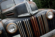 Domestic Trucks Posters - Rusty Old Ford Truck - IMG4413 Poster by Wingsdomain Art and Photography