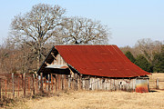 Wooden Barns Posters - Rusty Roof Poster by Joy Tudor