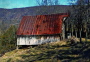 Old Barn Posters - Rusty Roof Poster by Kathy Jennings