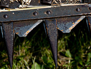 Mower Prints - Rusty Sharp Blades Print by Wilma  Birdwell