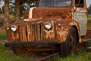 Arkansas Framed Prints - Rusty Truck 5 Framed Print by Douglas Barnett