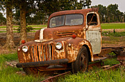 Arkansas Framed Prints - Rusty Truck 9 Framed Print by Douglas Barnett