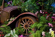 Wrecked Cars Prints - Rusty truck in the garden Print by Garry Gay