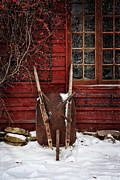 Quirky Art - Rusty wheelbarrow leaning against barn in winter by Sandra Cunningham