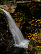 Sabbaday Falls In Nh Print by Scott Moore