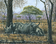 Bush Wildlife Paintings - Sabi Sand Siesta by Richard Harpum
