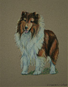 Champion Pastels Framed Prints - Sable Champion Framed Print by Susan Herber