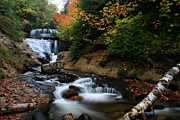 Matthew Winn Art - Sable Falls in Autumn by Matthew Winn