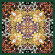 Sacred Geometry Photo Posters - Sacred Space Poster by Bell And Todd