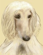 Afghan Hound Mixed Media - Sadi by Donna Johnson