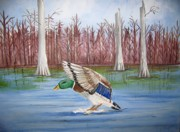 Waterfowl Paintings - Safe Landing by Belinda Lawson