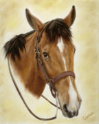 Horse Prints - Safe Passage Print by Cathy Cleveland