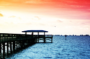 Palm Harbor Posters - Safety Harbor Pier Poster by Bill Cannon
