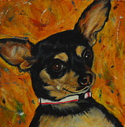 Chihuahua Framed Prints - Saffy Framed Print by Bonnie Peacher