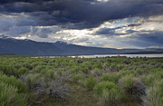 Pretty Clouds Prints - Sage Brush Surrounding Mono Lake Print by Brendan Reals