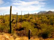 Desert Digital Art - Saguaro National Park by Kurt Van Wagner