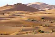 Moroccan Photos - Saharan Sand Dunes by Bob Gibbons