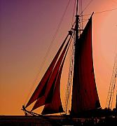 Schooner Prints - Sail at Sunset Print by Susanne Van Hulst
