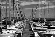 China Basin District Prints - Sail Boats at San Francisco China Basin Pier 42 With The Bay Bridge in The Background . 7D7166 Print by Wingsdomain Art and Photography