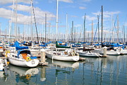 San Francisco Giants Photo Prints - Sail Boats at San Francisco China Basin Pier 42 With The Bay Bridge in The Background . 7D7664 Print by Wingsdomain Art and Photography