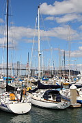 Sail Boats At San Francisco China Basin Pier 42 With The Bay Bridge In The Background . 7d7685 Print by Wingsdomain Art and Photography