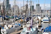 San Francisco Giants Photo Prints - Sail Boats at San Francisco China Basin Pier 42 With The San Francisco Skyline . 7D7675 Print by Wingsdomain Art and Photography