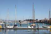 Catamaran Prints - Sail Boats At The San Francisco Marina - 5D18171 Print by Wingsdomain Art and Photography