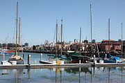 Sail Boats Prints - Sail Boats At The San Francisco Marina - 5D18172 Print by Wingsdomain Art and Photography